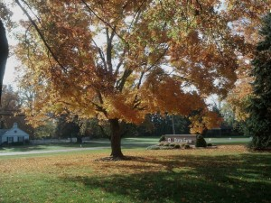 2012-10-22_10-16-00_835